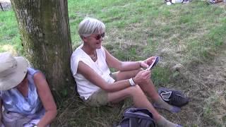 Vierdaagse 2017 Theo Boersma