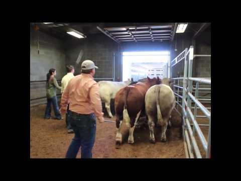 Texas Tech Zilmax Informative Video
