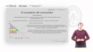 Microeconomía I - La Teoría De La Demanda (14) - Alfonso Rosa García