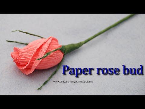 DOWNLOAD LAGU Бутон розы из конфеты и бумаги. PAPER ROSE BUD TUTORIAL FREE MP3 DOWNLOADS MP3TUBIDY
