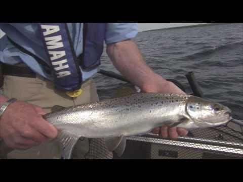 La pêche à la Ouananiche sur le Lac-St-Jean