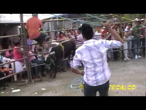 MONTA TRAGICA DE LA GUACAMAYA