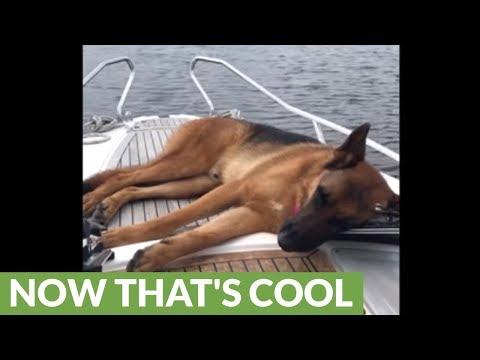 rilassarsi-in-barca
