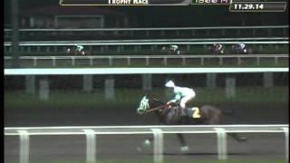 RACE 11 BALATKAYO 11/29/2014