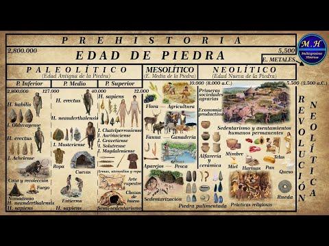 Prehistoria. La Edad de Piedra. Paleolítico, Mesolítico y Neolítico