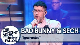 Video Bad Bunny & Sech: Ignorantes download in MP3, 3GP, MP4, WEBM, AVI, FLV January 2017