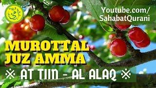 Surat At Tiin & Surat Al Alaq Merdu | Murottal Juz Amma/Juz 30 - Metode Ummi Foundation