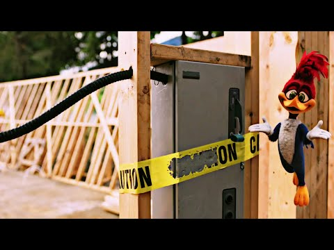 Woody=Woodpecker=Official=Trailer=#1 Movie Trailers HD