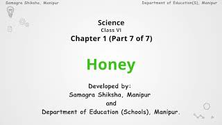 Chapter 1 (Part 7 of 7) -Honey