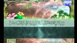 HD الجزء 21 الربعين 3 و 4  : الشيخ  شيخ أبو بكر الشاطري