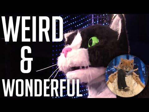 ALL Weird & Wonderful Auditions on America's Got Talent 2013 | Got Talent Global (видео)