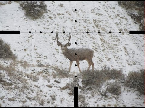 SNIPER 101 Part 20 - Effective Reticles and Objective Lens Sizes