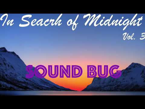 In Search of Midnight Vol. 3 (PROGRESSIVE HOUSE YEAR MIX)