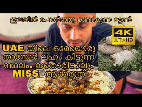 FOOD VLOG 53 - Traditional Authentic Emarati Arabic Food || Tanor Laham || Hatta UAE