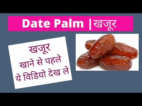 Benefits of Eating Dates in Winters   खजूर कैसे खाये