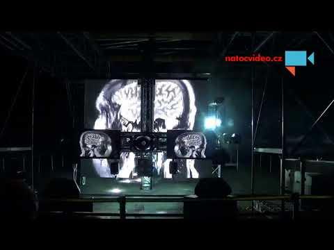 Festival Signal 5