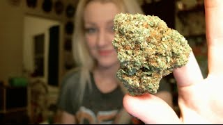 CANNABIS RELIEVES MIGRAINES?! | news nug recap | CoralReefer & DizzyOG by Coral Reefer