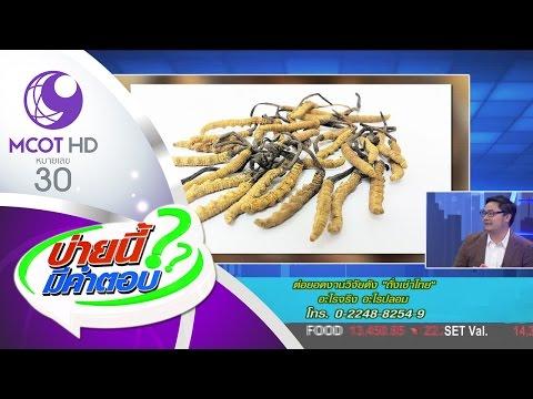 ต่อยอดงานวิจัยดัง ถั่งเช่าไทย อะไรจริง อะไรปลอม (27 เม.ย.60) บ่ายนี้มีคำตอบ | 9 MCOT HD