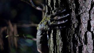 Nonton Arbor Demon 2017   Trailer Horror Film Subtitle Indonesia Streaming Movie Download