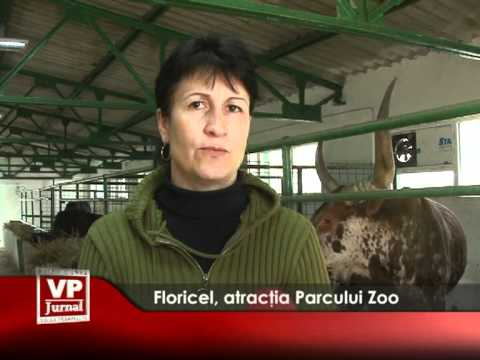 Floricel, atracția Parcului Zoo