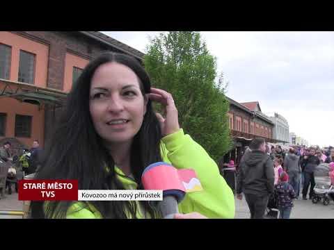 TVS: Staré Město - Den Země v Kovozoo