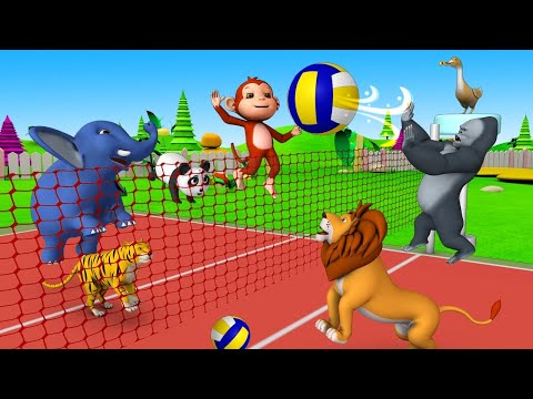Funny Animals Play Volley Ball in Forest with Monkey & Gorilla | Animals Cartoon Comedy Video