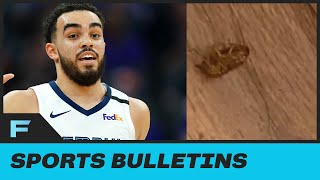 Memphis Grizzlies Tyus Jones Shares GROSS Photo Of DEAD Cockroach Inside His Orlando Hotel Room by Obsev Sports