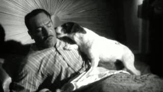 Las mejores escenas de Uggie ''The artist'' - YouTube