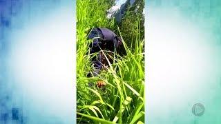 Acidente mata paraquedista e deixa outro ferido em Boituva