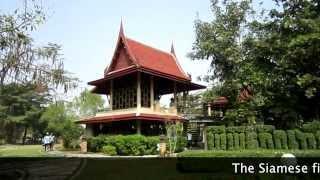 Khlong Khuean Thailand  city photos gallery : Sri Nakhon Khuan Khan Park, Bangkok, Thailand