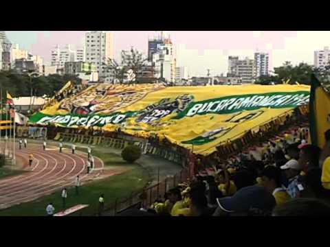 Fortaleza Leoparda Sur estrena bandera gigante - Fortaleza Leoparda Sur - Atlético Bucaramanga