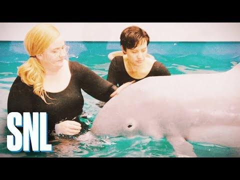The Dolphin Who Learned to Speak - SNL