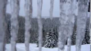 Video Andre - Zimní královna (original Arakain)