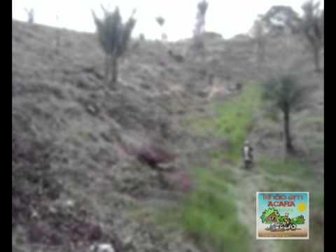 trilha em Acará
