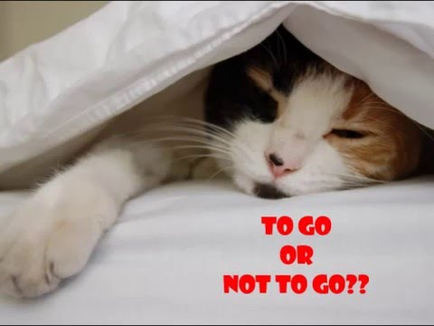 To Go or Not To Go?- Intrapersonal communication