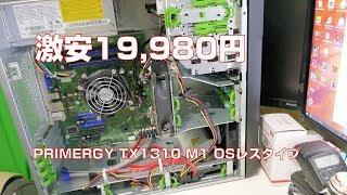 PRIMERGY TX1310 M1 OSレスタイプ(箱汚れ品)https://nttxstore.jp/_II_QZX0014298PCI Express 3.0 (x8レーン) [x8ソケット]×2、PCI Express 2.0 (x4レーン) [x8ソケット]×1、PCI Express 2.0 (x1レーン) [x4ソケット]×1 がありますのでビデオカードいけました。コメントで指摘いただきました。サウンド機能が排除されてます。ご注意ください。