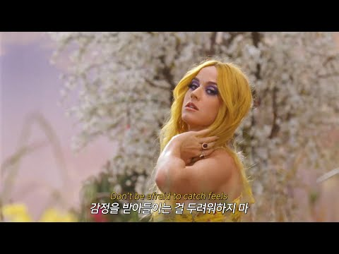 트로피컬 바이브란 이런 것 🌴 [MV] Calvin Harris - Feels /ft. Pharrell Williams, Katy Perry, Big Sean [가사해석/번역]