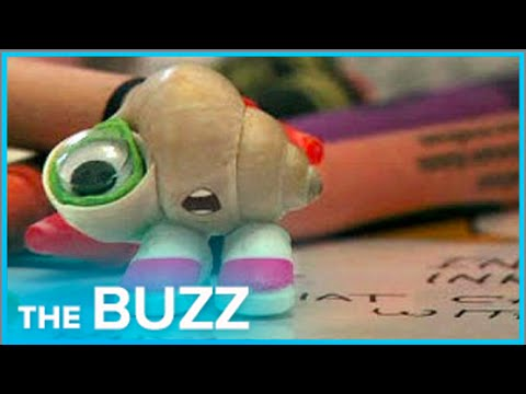 internetsensation - This world got a little brighter when Marcel the Shell was born on the Internet. The story of how actress Jenny Slate came up with the idea of the cutest little shell with shoes on will definitely...
