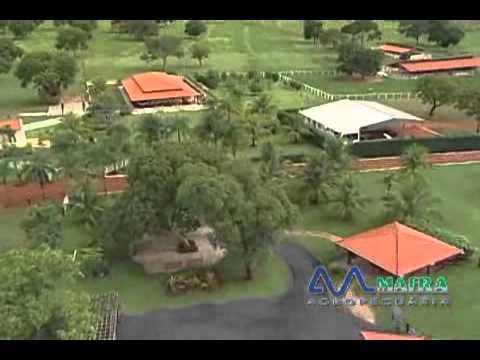 Institucional Fazenda Minas