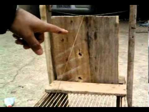 como pegar um rato  facil de fazer