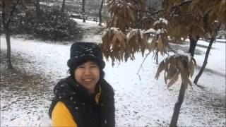 Hanam-si South Korea  city pictures gallery : THE FIRST SNOWFALL OF THE SEASON IN HANAM-SI (Korea)