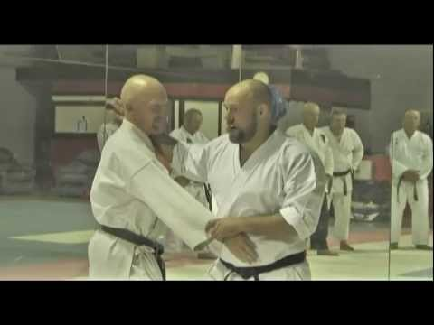 Iain Abernethy Karate Bunkai - Seminar Overview - interview