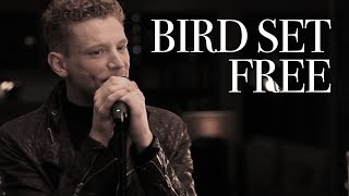 Aidan Martin - Bird Set Free - Sia - Cover