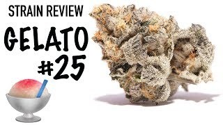 Strain Review: Gelato #25 by The Cannabis Connoisseur Connection 420