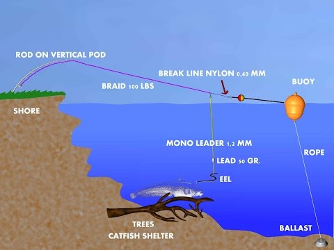 CATFISH TUTORIAL: BREAK LINE SYSTEM by CATFISHING WORLD_Horgászat videók