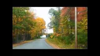 NH Autumn Drive (Jose Padilla - Dragonflies Cantoma Remix)