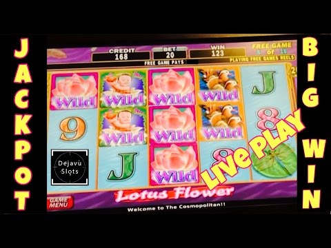 ** LIVE PLAY JACKPOT ** LOTUS FLOWER HIGH LIMIT SLOT MACHINE HANDPAY BIG WIN SLOT MACHINE