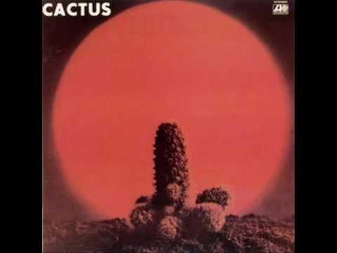 Tekst piosenki Cactus - No Need to Worry po polsku