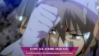 Video Top 10 Harem Anime With NOT A PUS#Y Male Lead MP3, 3GP, MP4, WEBM, AVI, FLV Juli 2018