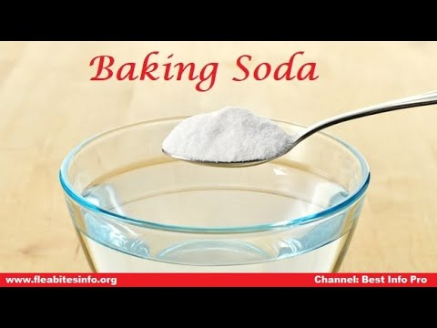 How to Get Rid of Bed Bugs Fast with Baking Soda!